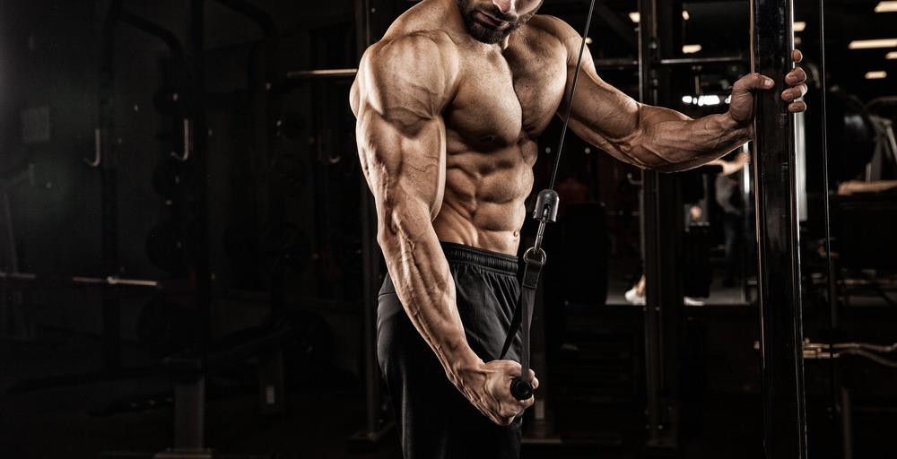 Meilleur Pré Workout pour la Congestion des Muscles