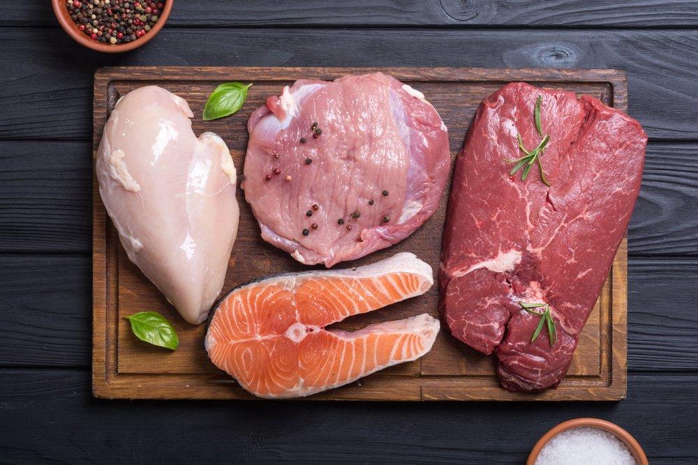 6 Aliments Riches en Protéines pour le Bodybuilding